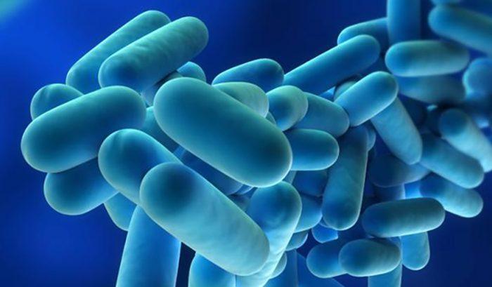 Análisis-Legionella-Test-Rápidos-Laboratorio-Control